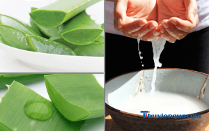 Cách làm trắng da từ nha đam và nước vo gạo